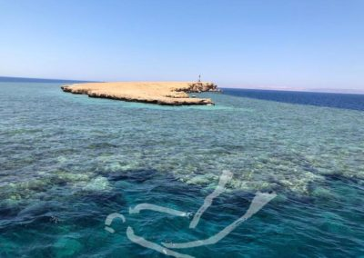DIVING IN HURGHADA